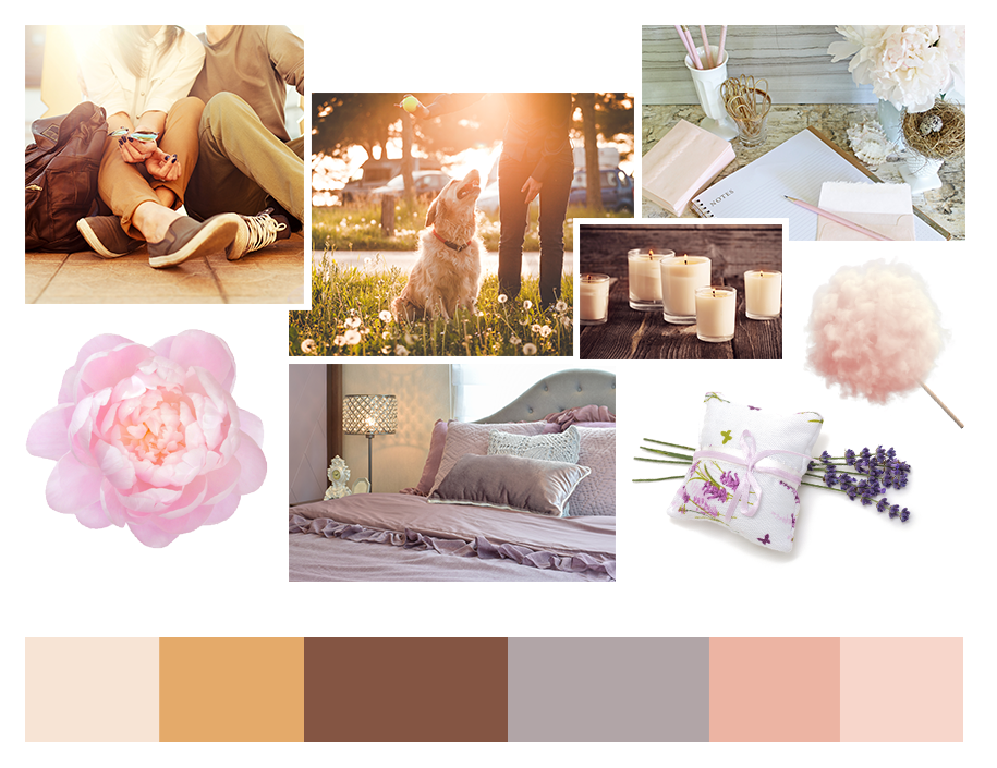 Palette: Getting to Know Each Other