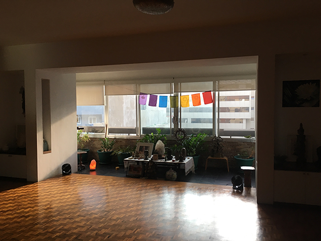 Natural light in Stillpoint yoga studio