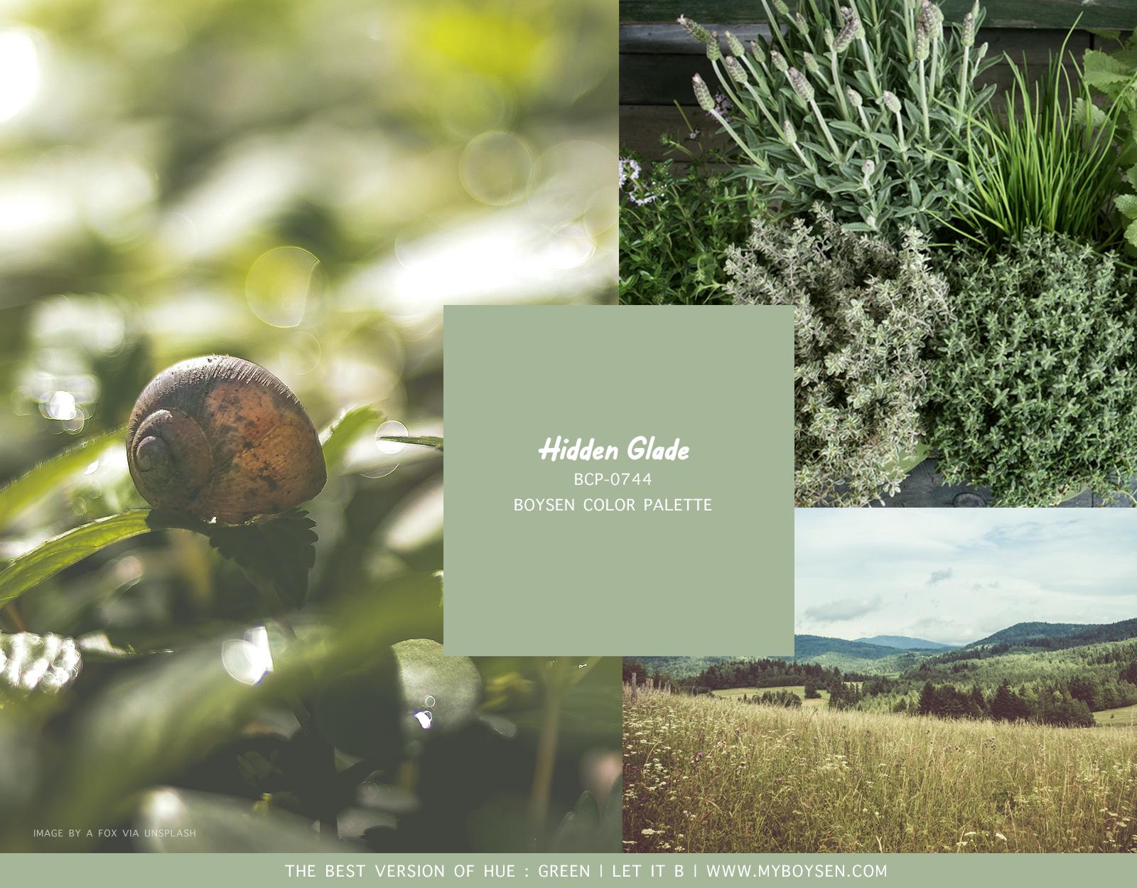 The Best Version of Hue: Green 4 - Hidden Glade