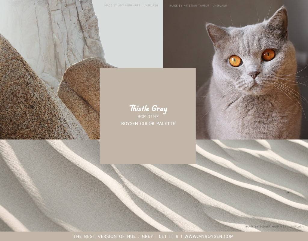 The Best Version of Hue: Grey | Palette 2 | Boysen Color