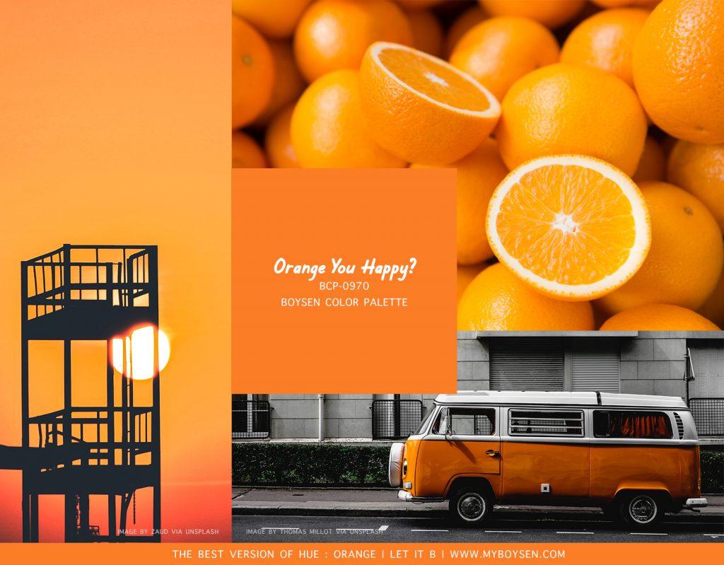 Boysen Orange Paint Color